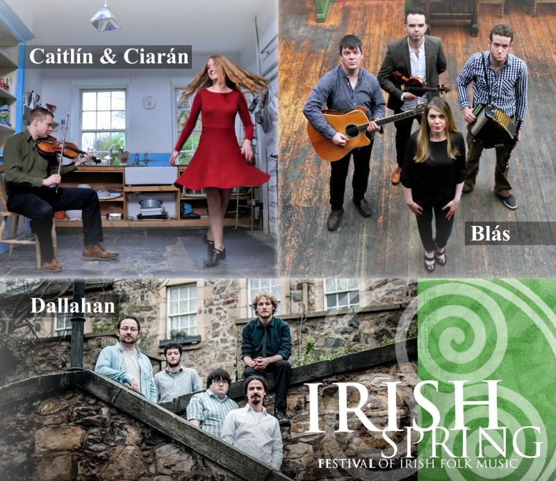 Werbebanner Irish Spring Festival 2016 für die Webseite des Kulturbüros Hattingen